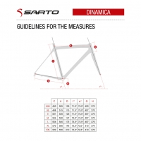 Dinamica_guidelines_measures